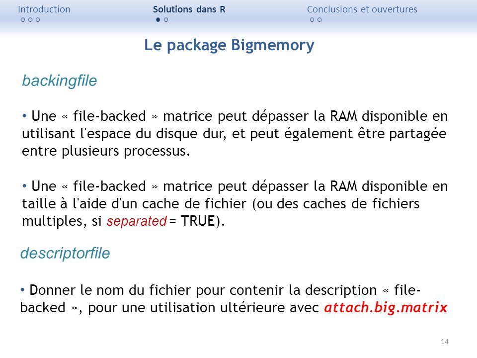 Le package Bigmemory backingfile descriptorfile