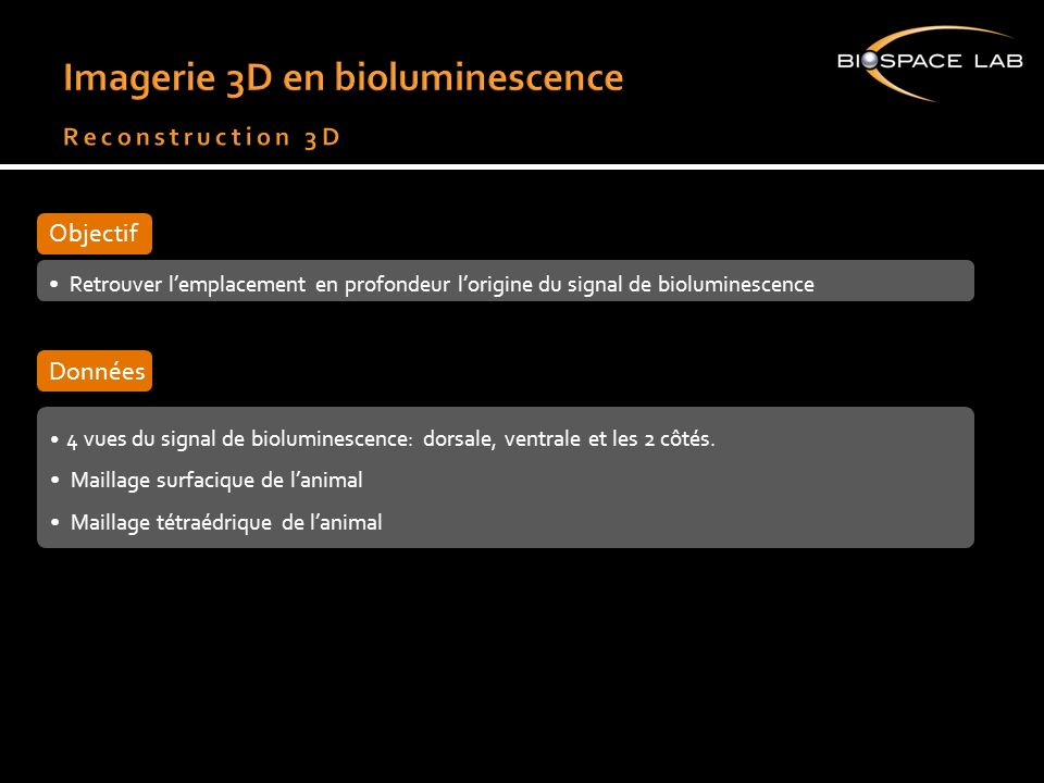 Imagerie 3D en bioluminescence Reconstruction 3D