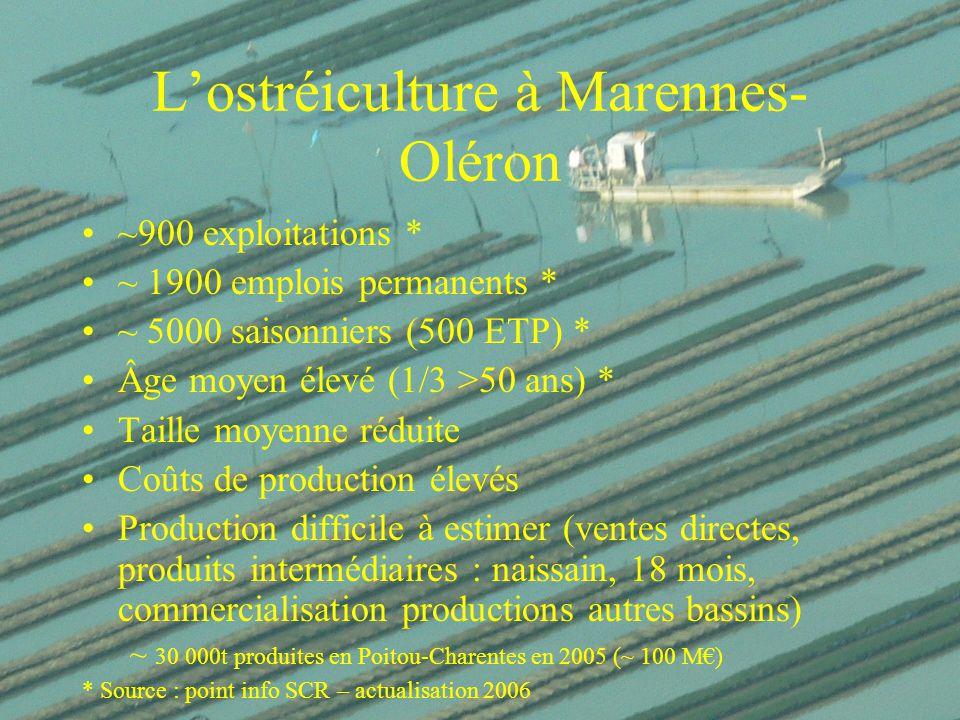 L'ostréiculture à Marennes-Oléron