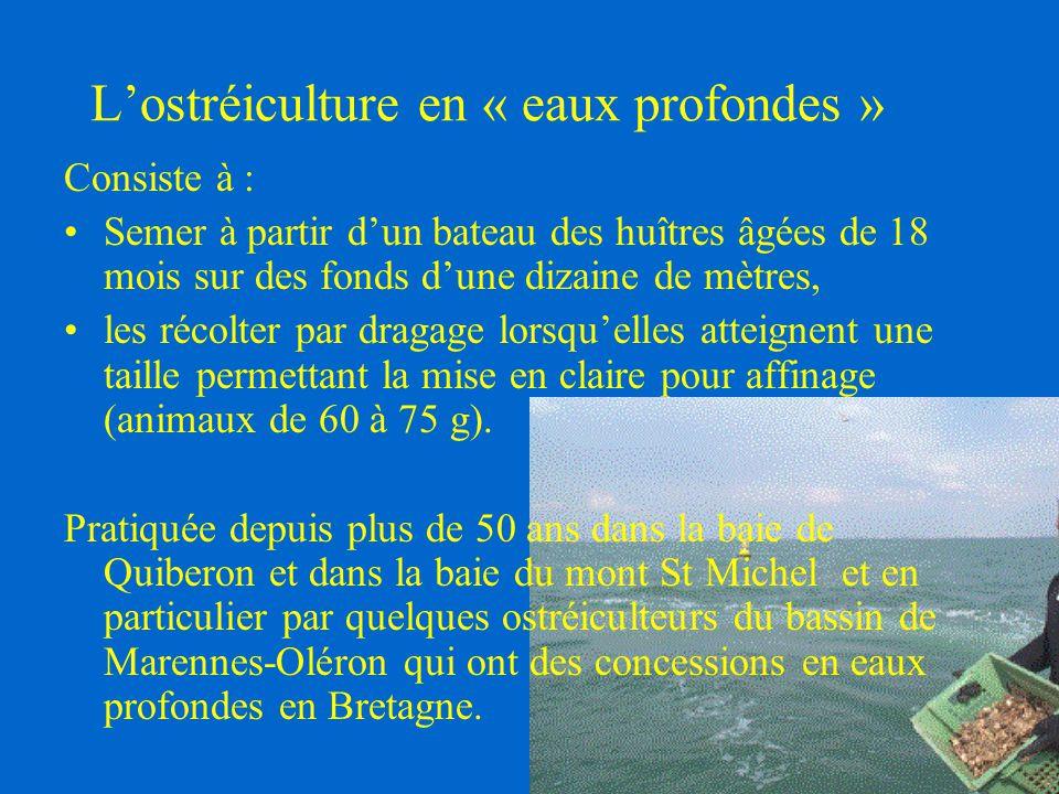 L'ostréiculture en « eaux profondes »