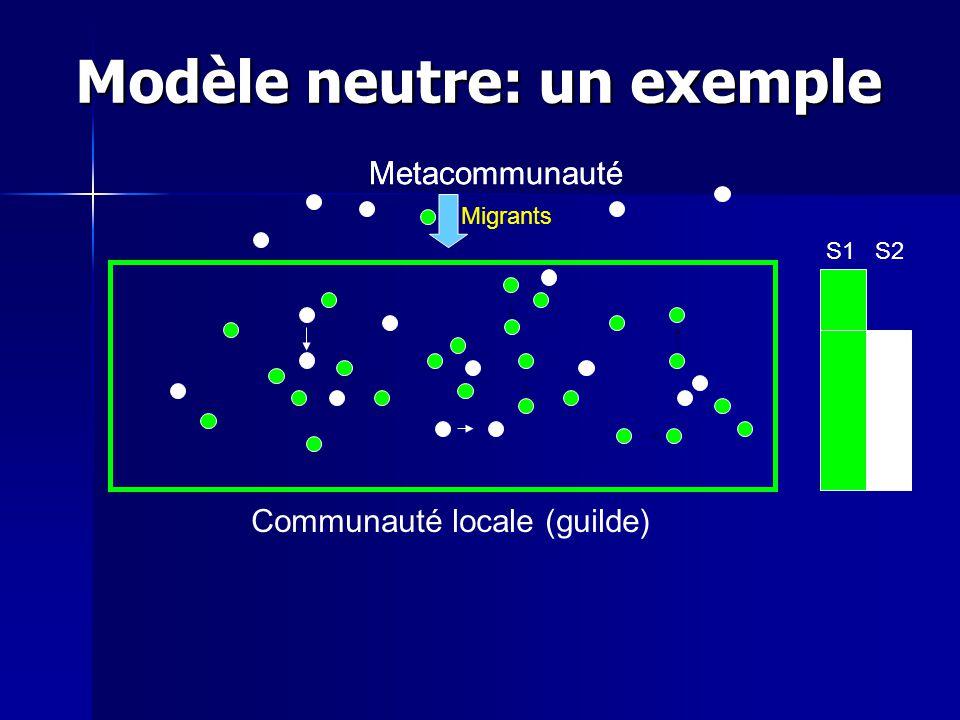 Modèle neutre: un exemple