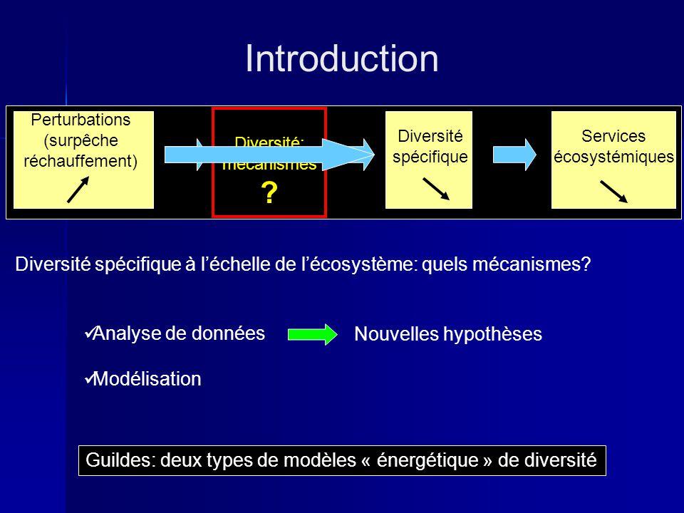 Introduction Diversité spécifique à l'échelle de l'écosystème: quels mécanismes Diversité: mécanismes.