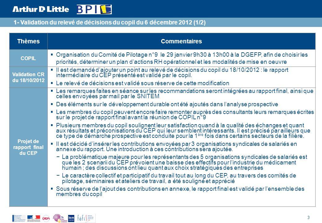 Projet de rapport final du CEP