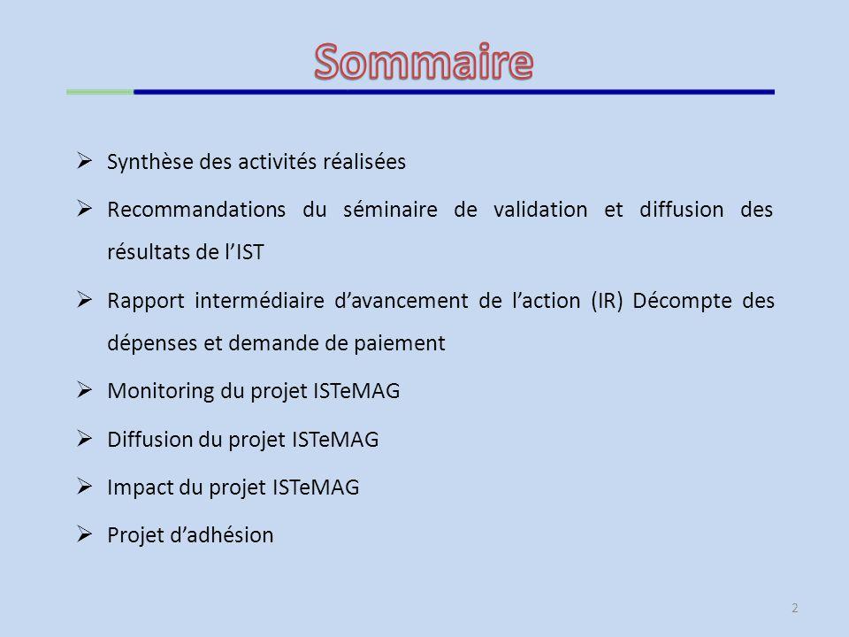 Sommaire Synthèse des activités réalisées