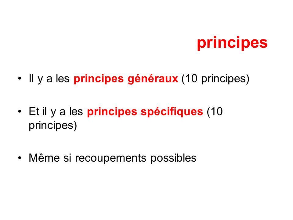 principes Il y a les principes généraux (10 principes)