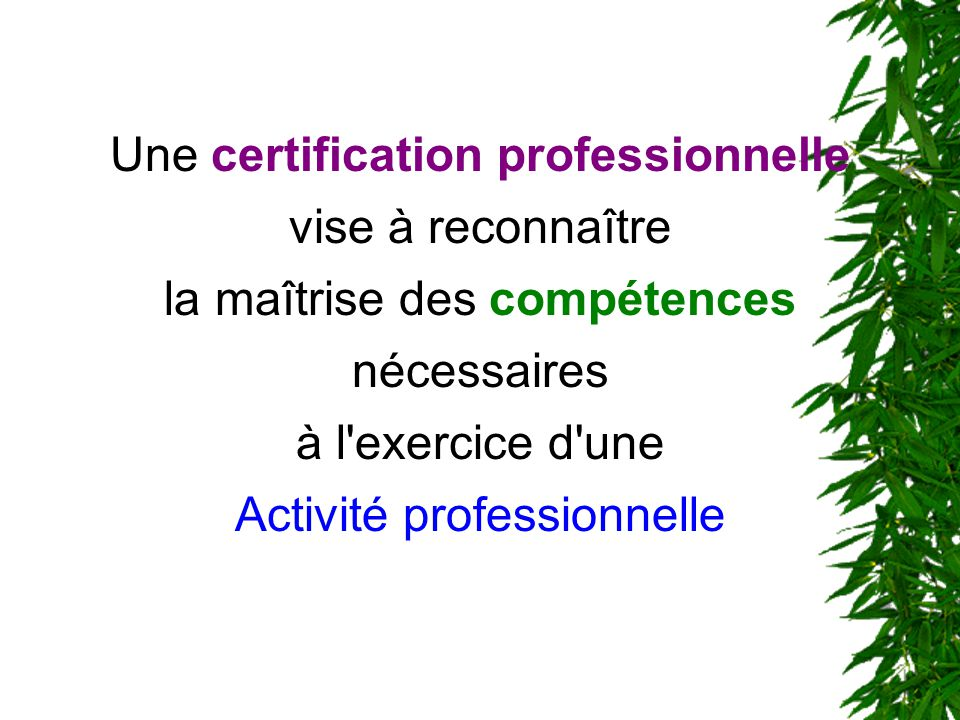 Une certification professionnelle vise à reconnaître