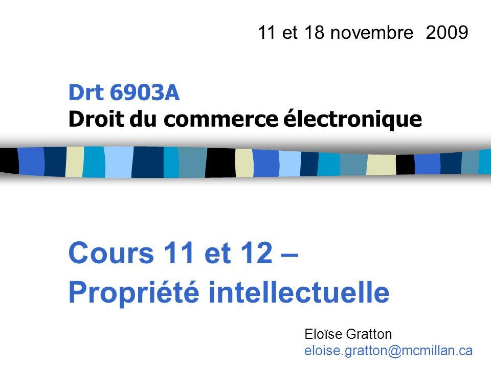 Drt 6903A Droit du commerce électronique