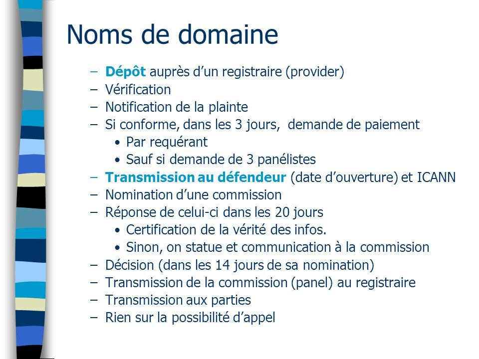 Noms de domaine Dépôt auprès d'un registraire (provider) Vérification
