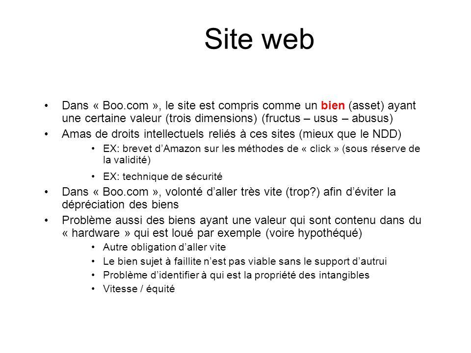 Site web Dans « Boo.com », le site est compris comme un bien (asset) ayant une certaine valeur (trois dimensions) (fructus – usus – abusus)