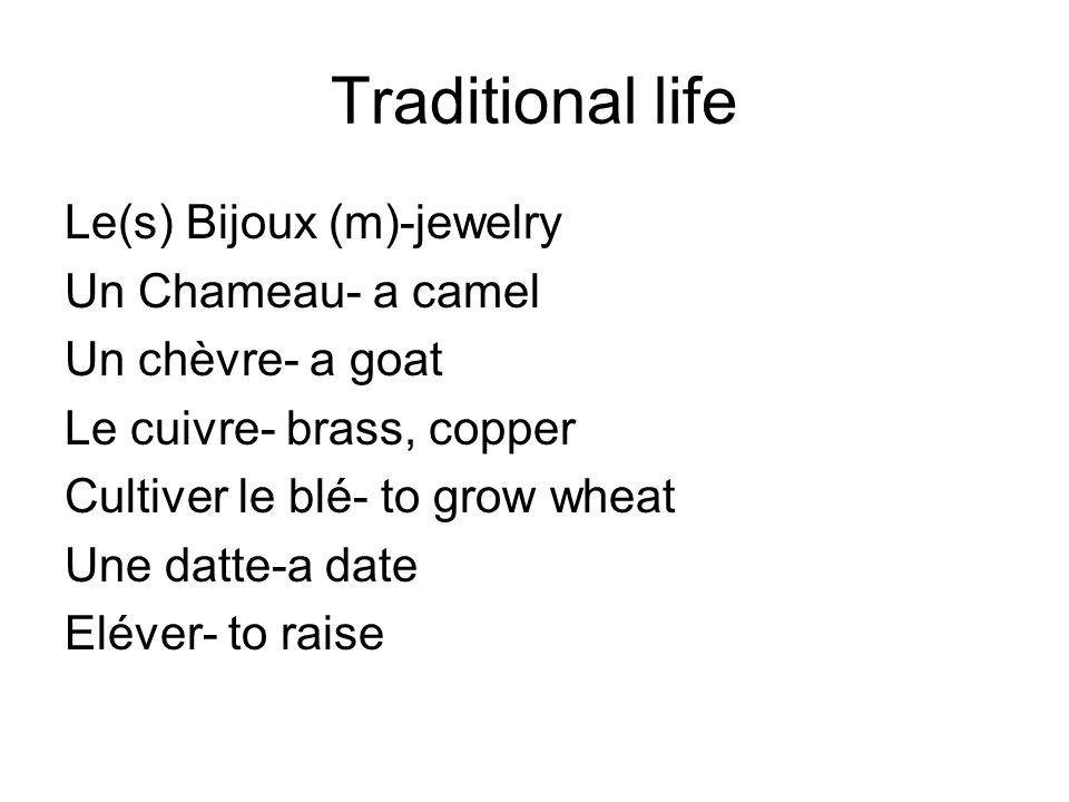 Traditional life Le(s) Bijoux (m)-jewelry Un Chameau- a camel