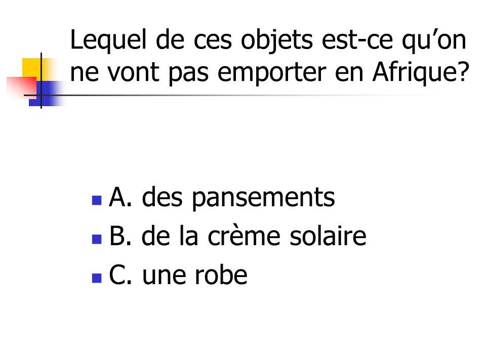 Lequel de ces objets est-ce qu'on ne vont pas emporter en Afrique