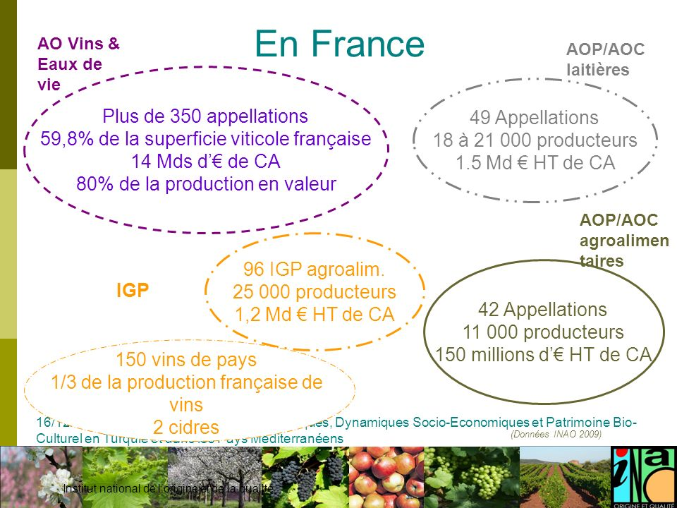 En France Plus de 350 appellations 49 Appellations