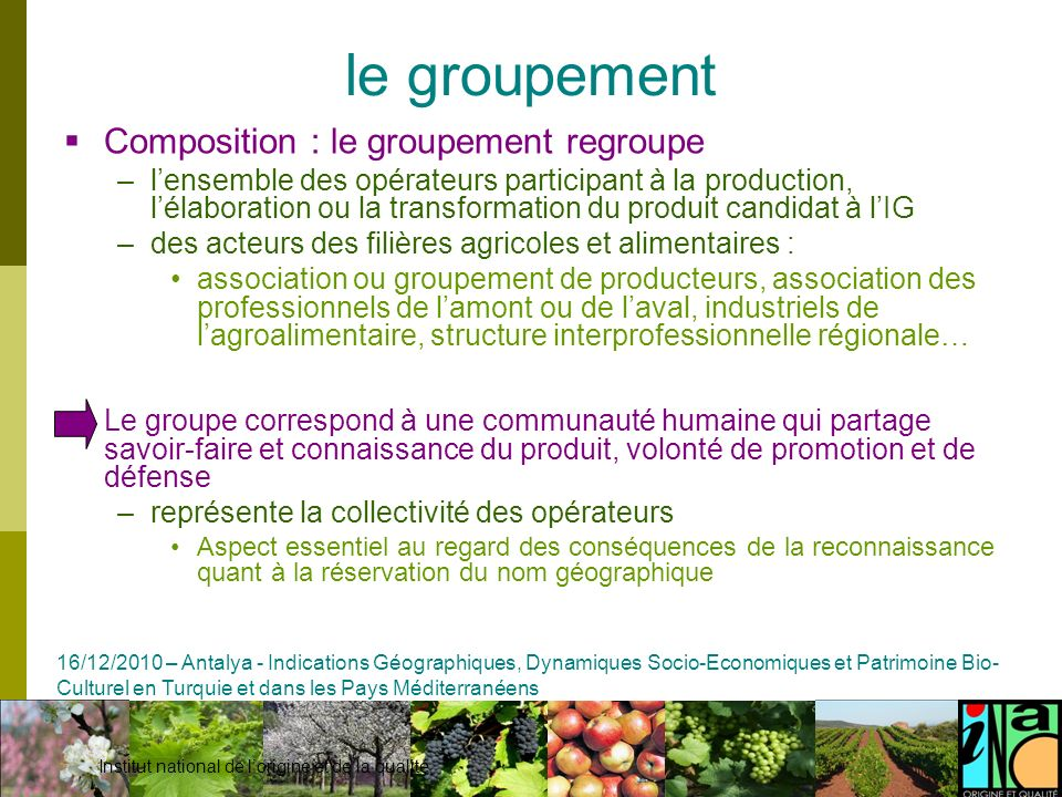 le groupement Composition : le groupement regroupe