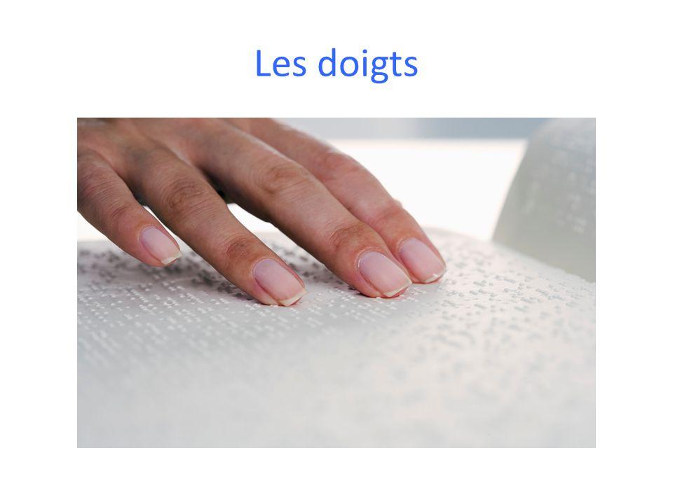 Les doigts