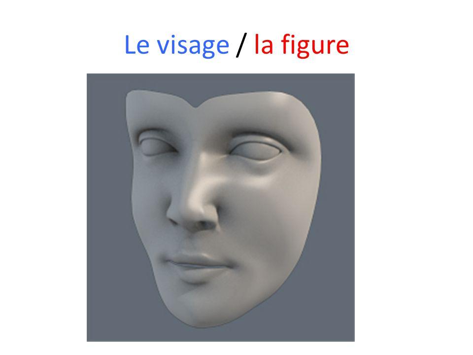 Le visage / la figure