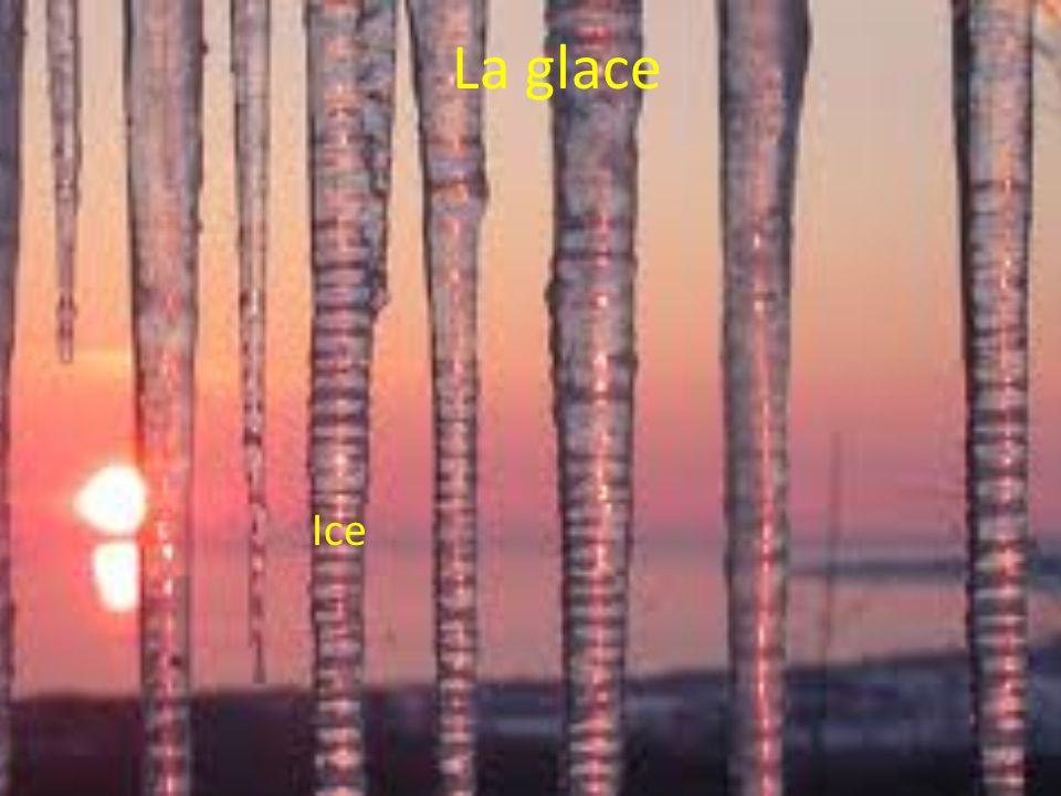 La glace Ice