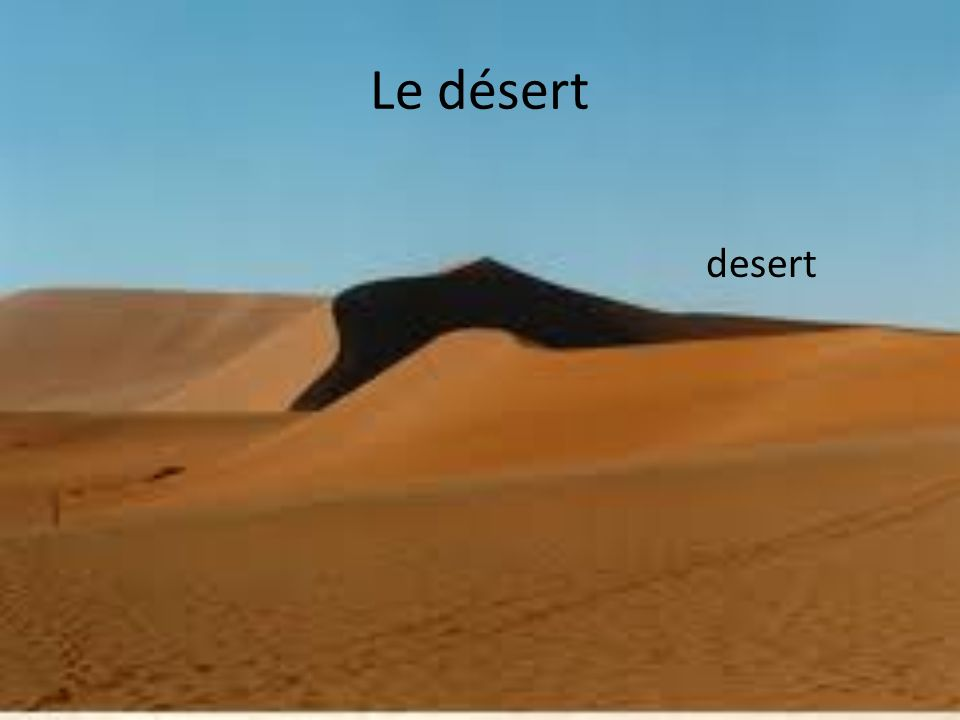 Le désert desert