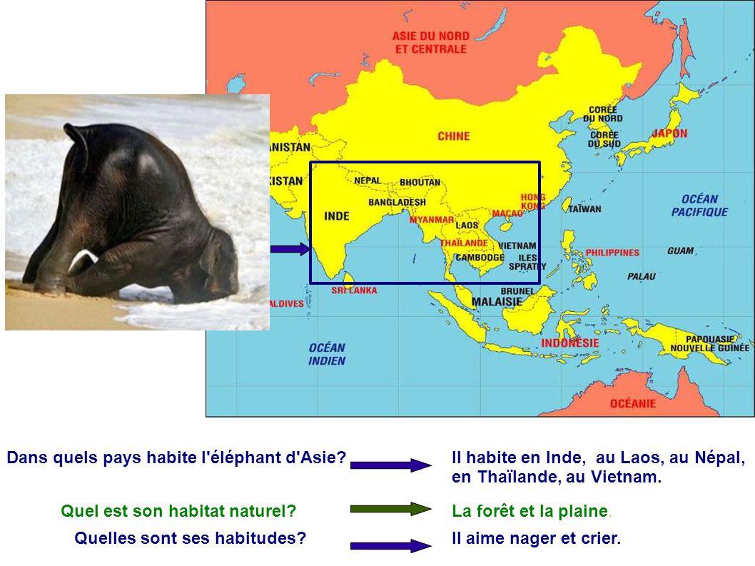 Dans quels pays habite l éléphant d Asie