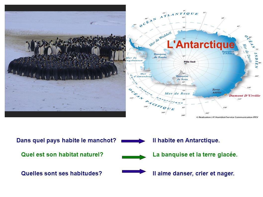 L Antarctique L Antarctique Dans quel pays habite le manchot