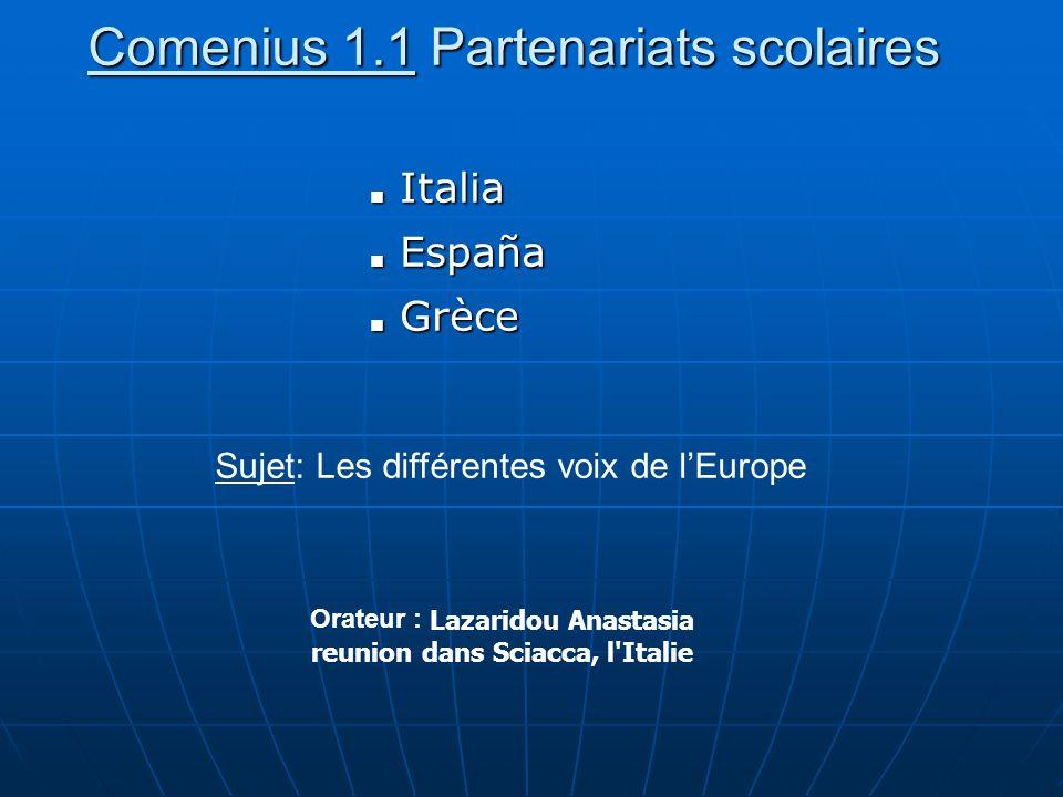Comenius 1.1 Partenariats scolaires