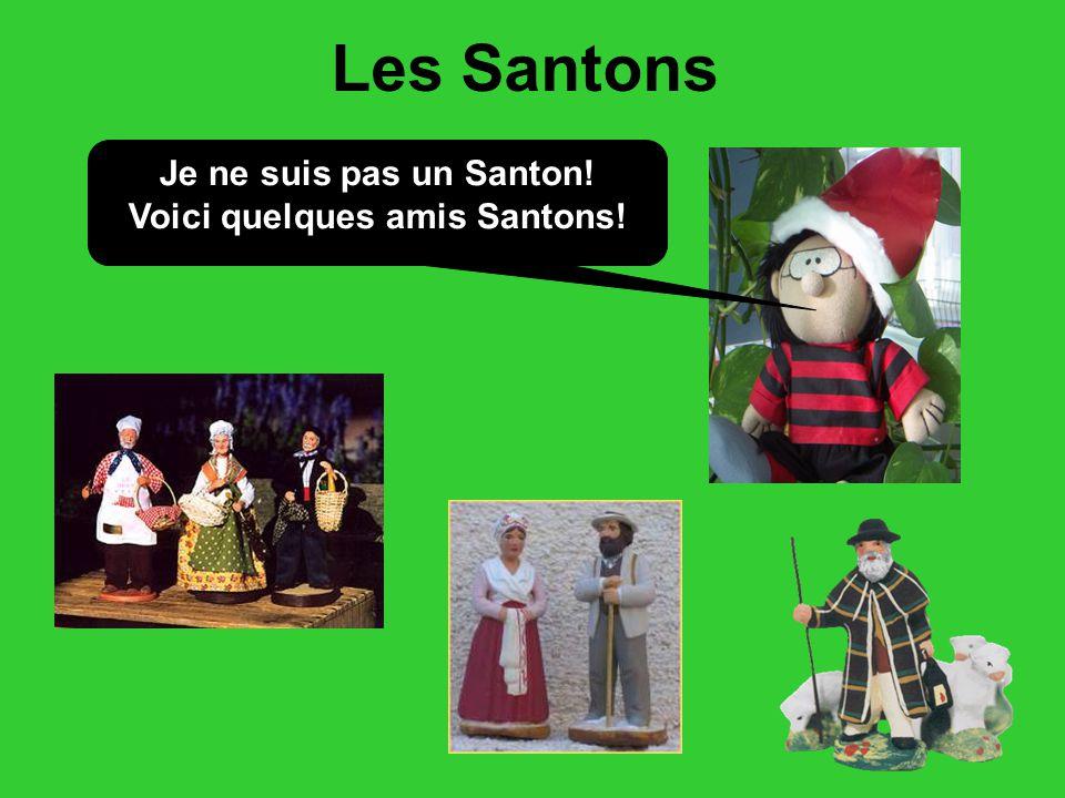 Voici quelques amis Santons!