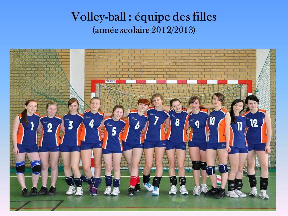 Volley-ball : équipe des filles (année scolaire 2012/2013)
