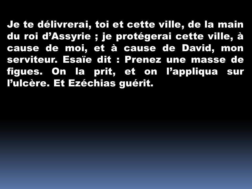 Je te délivrerai, toi et cette ville, de la main du roi d'Assyrie ; je protégerai cette ville, à cause de moi, et à cause de David, mon serviteur.