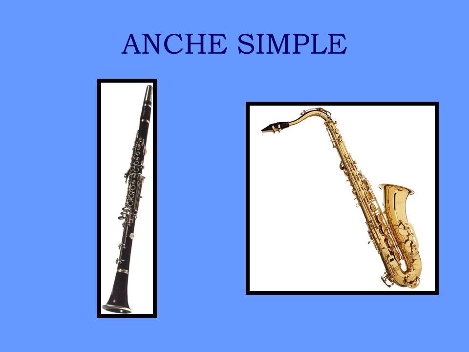 ANCHE SIMPLE