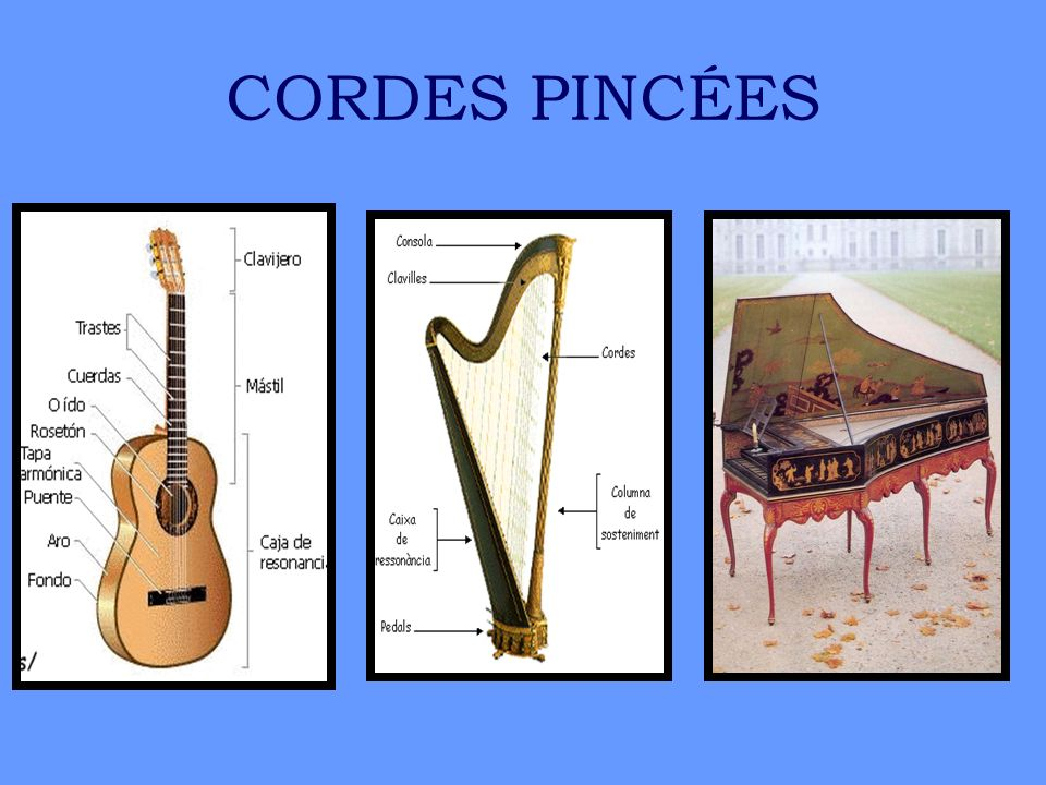 CORDES PINCÉES