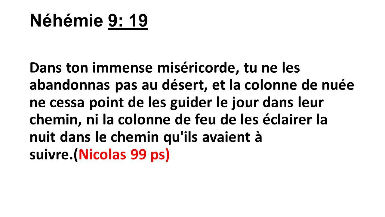 Néhémie 9: 19