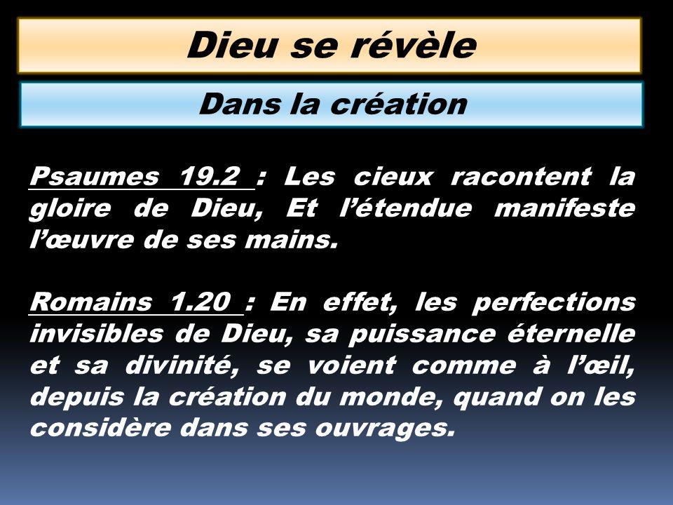 Dieu se révèle Dans la création
