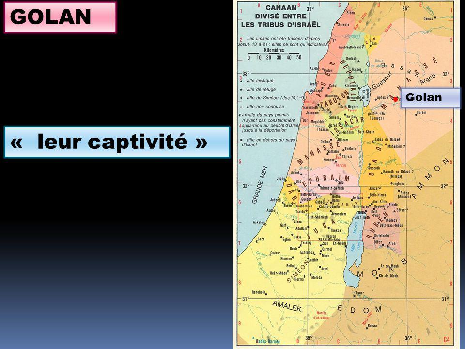 GOLAN Golan « leur captivité »