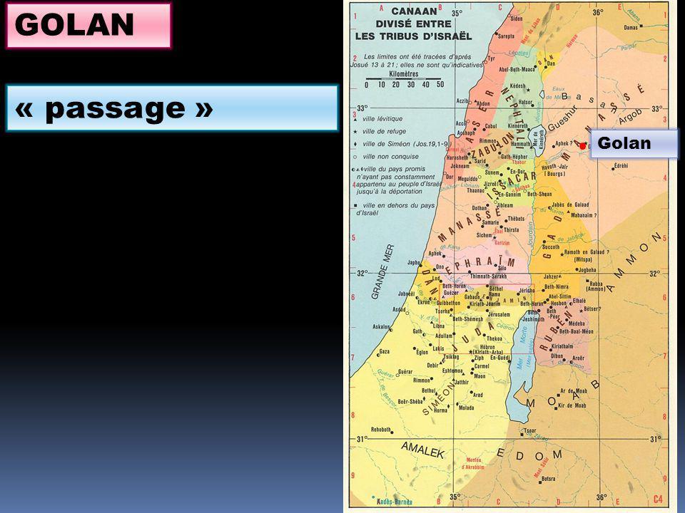 GOLAN « passage » Golan