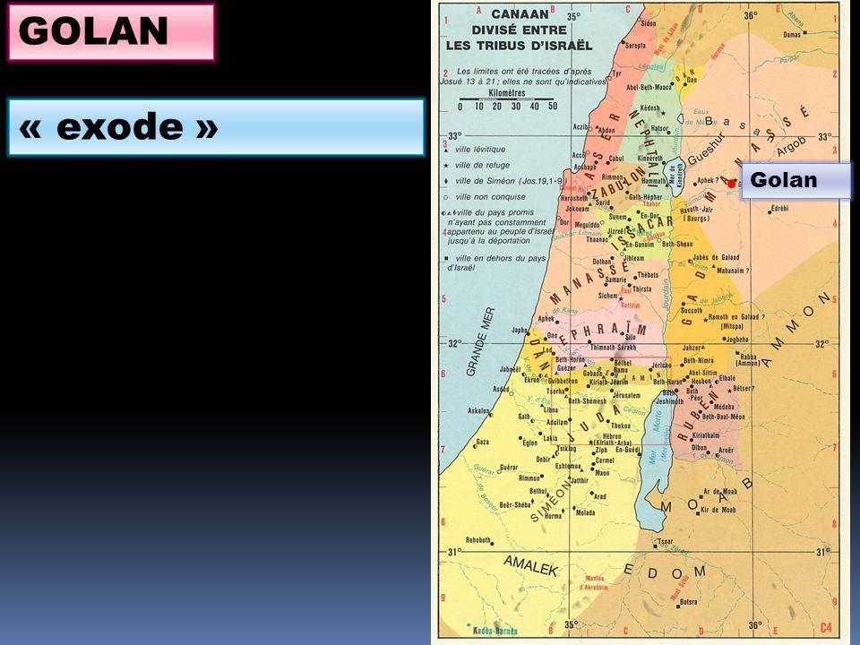 GOLAN « exode » Golan