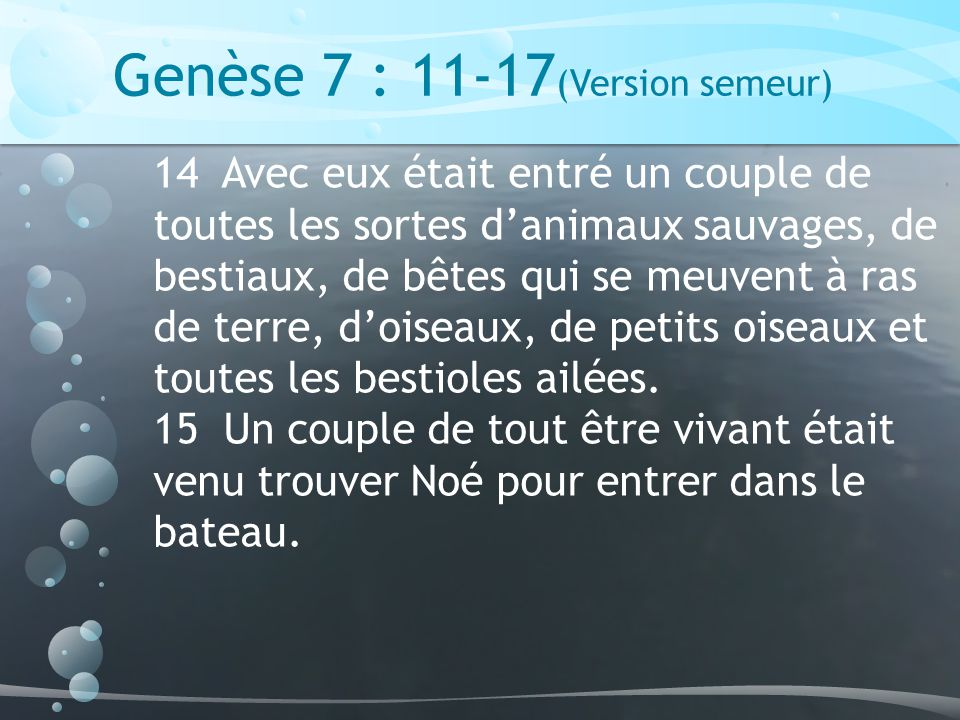 Genèse 7 : 11-17(Version semeur)