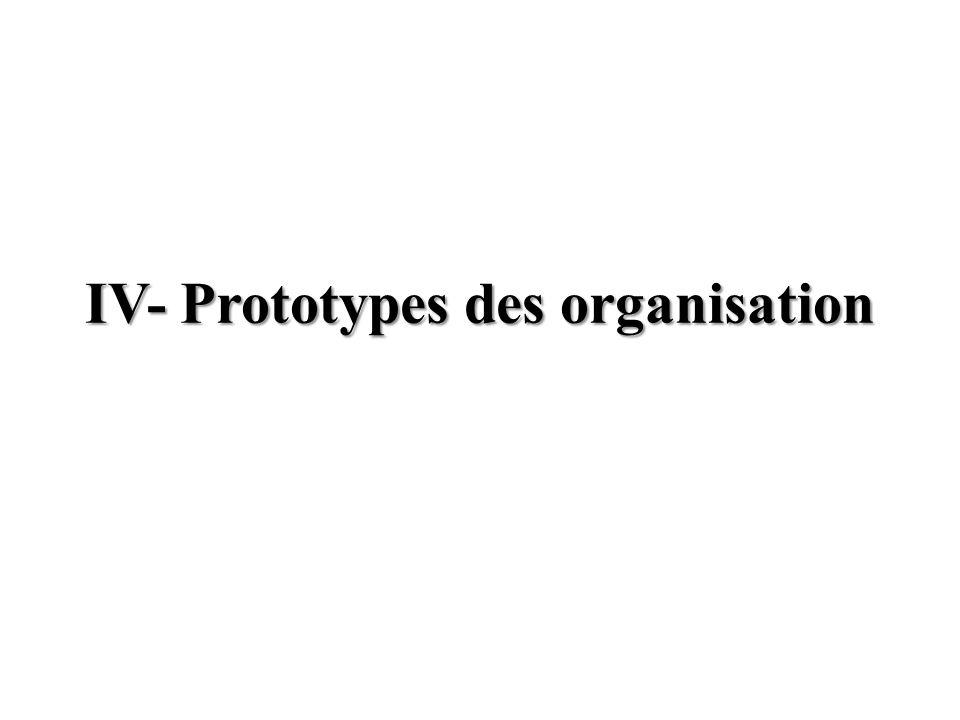 IV- Prototypes des organisation
