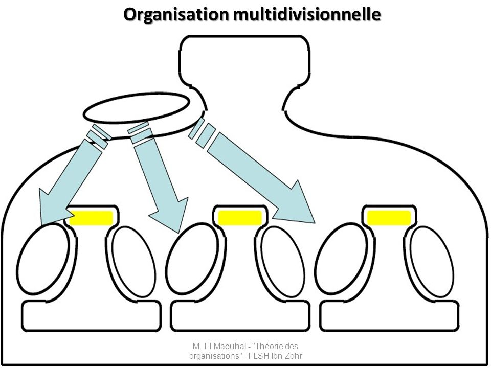 Organisation multidivisionnelle