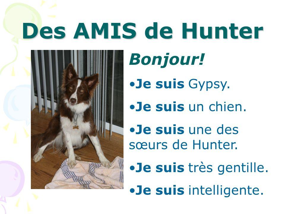 Des AMIS de Hunter Bonjour! Je suis Gypsy. Je suis un chien.