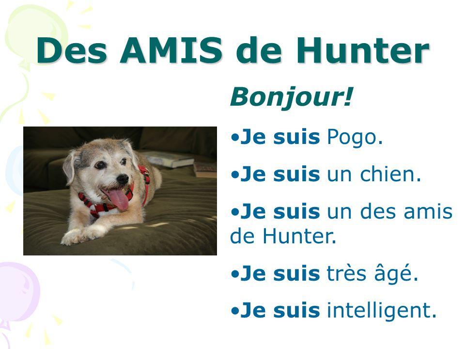 Des AMIS de Hunter Bonjour! Je suis Pogo. Je suis un chien.