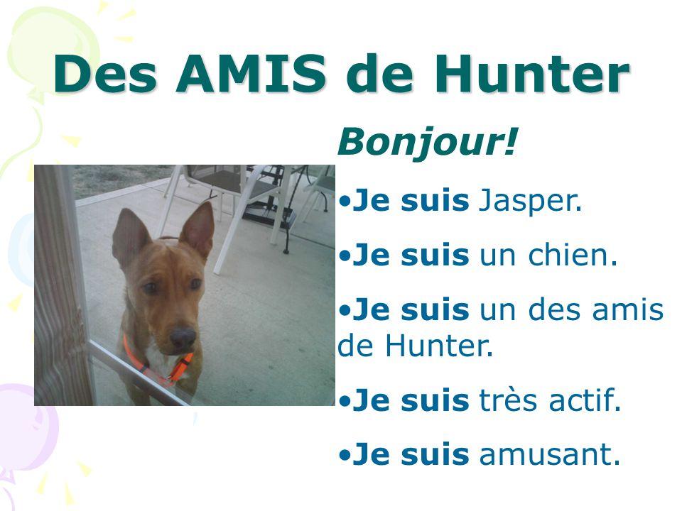 Des AMIS de Hunter Bonjour! Je suis Jasper. Je suis un chien.