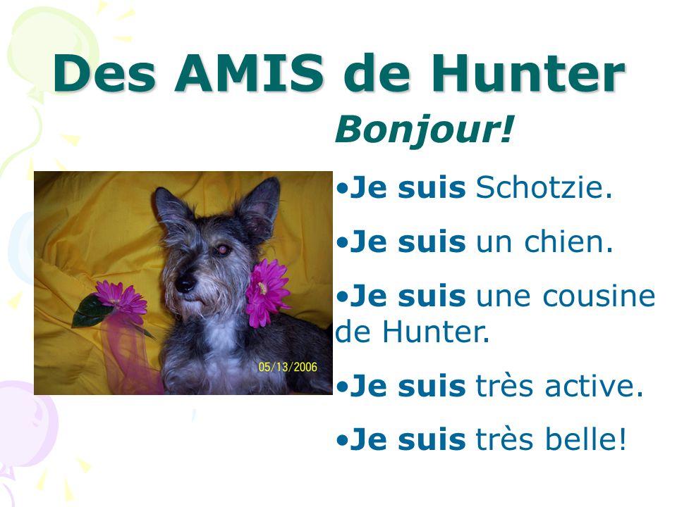 Des AMIS de Hunter Bonjour! Je suis Schotzie. Je suis un chien.