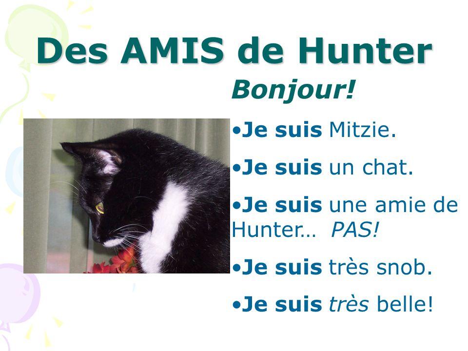 Des AMIS de Hunter Bonjour! Je suis Mitzie. Je suis un chat.