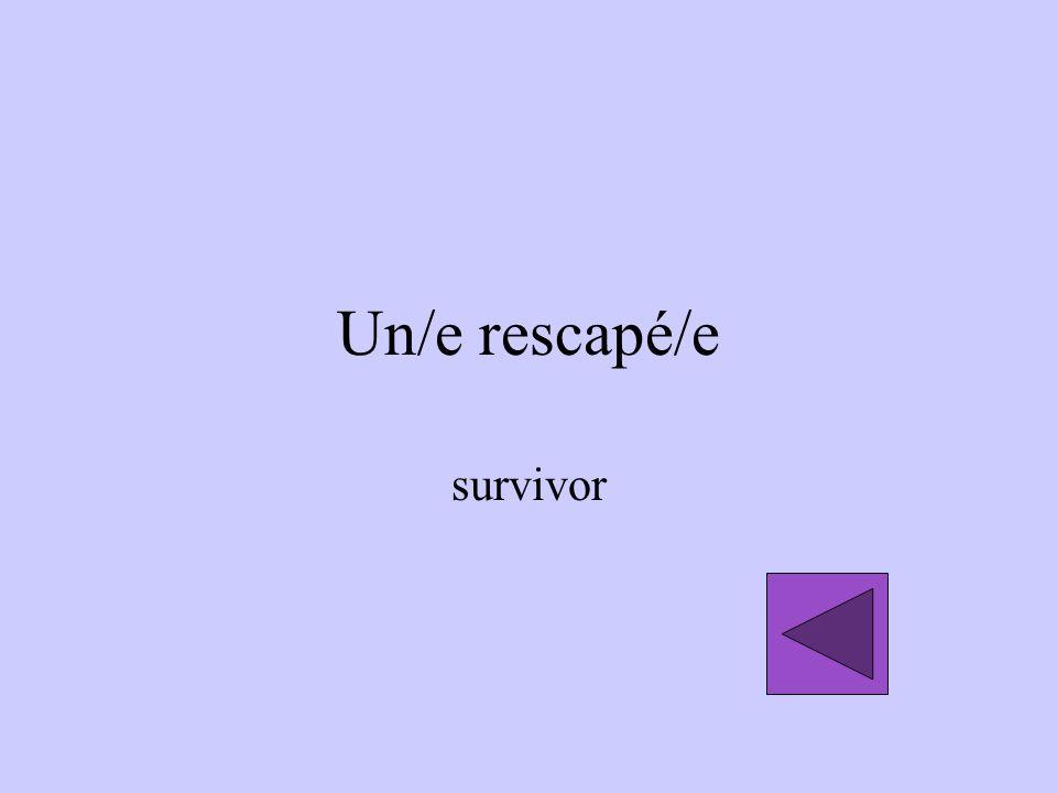 Un/e rescapé/e survivor