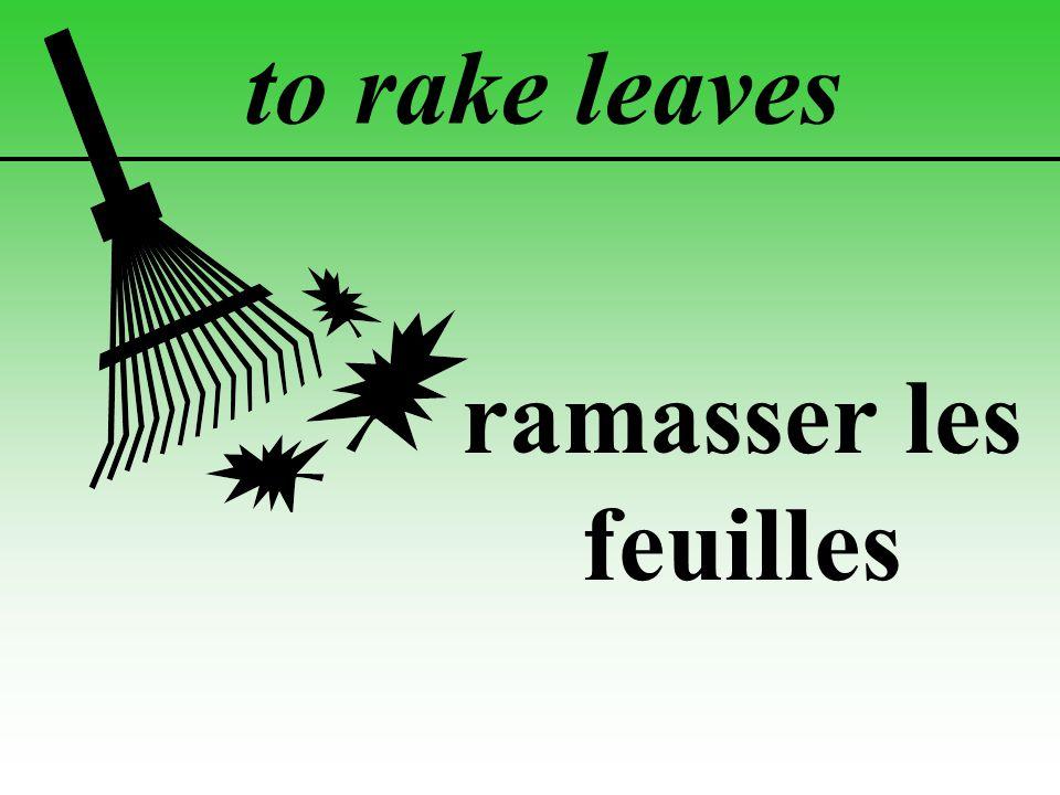 to rake leaves ramasser les feuilles