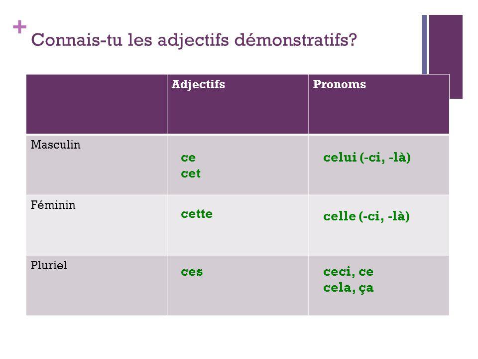 Connais-tu les adjectifs démonstratifs