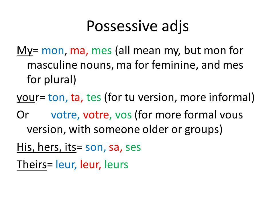 Possessive adjs