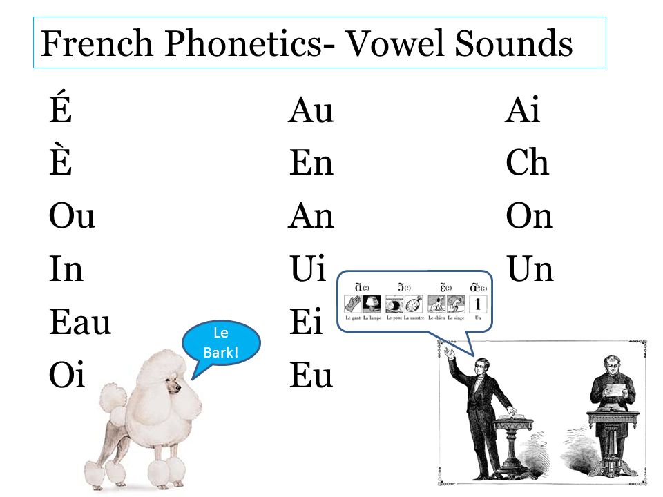French Phonetics- Vowel Sounds
