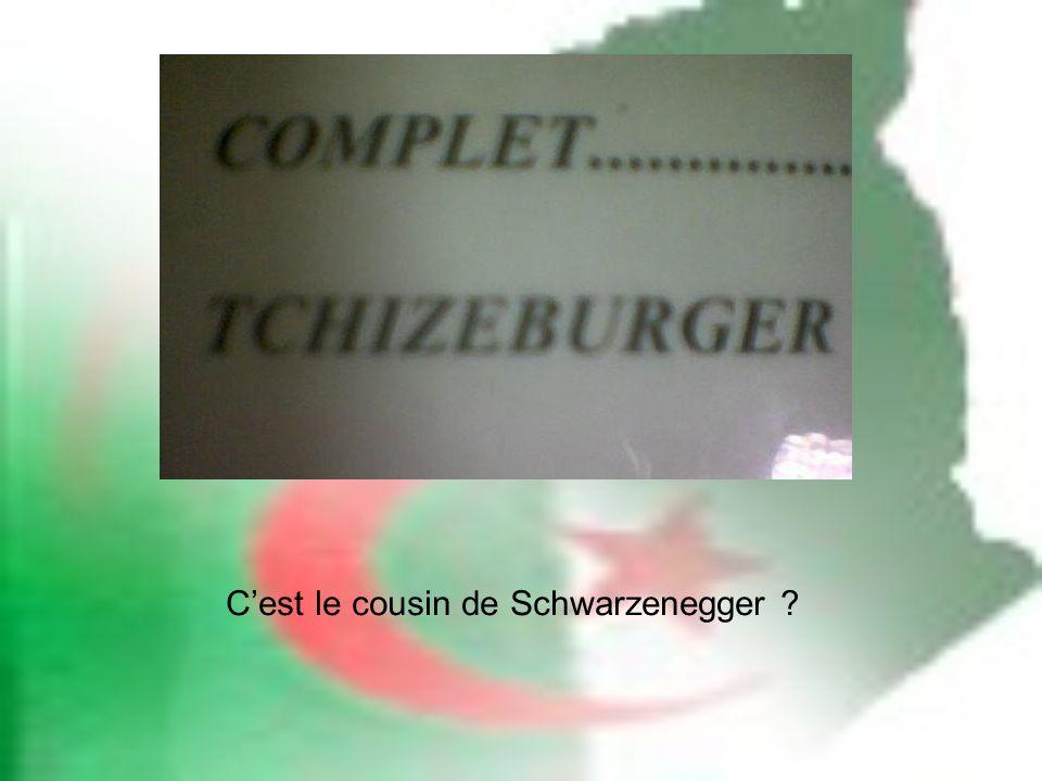 C'est le cousin de Schwarzenegger