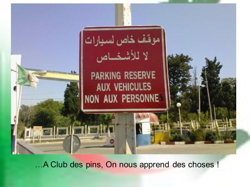 …A Club des pins, On nous apprend des choses !