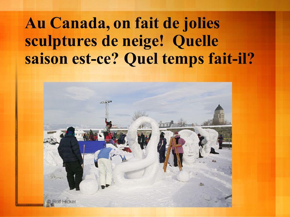 Au Canada, on fait de jolies sculptures de neige. Quelle saison est-ce